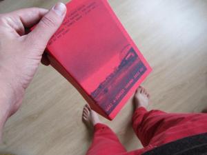 Collectief Waai maakte elke dag van de Vierdaagse live een boekje